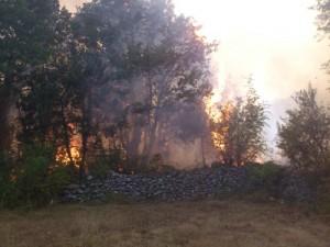 Os incêndios na colina das aparições que ameaçavam aldeia dos videntes 'mudou de direção, em vez de causar uma devastação maior do outro lado da colina.
