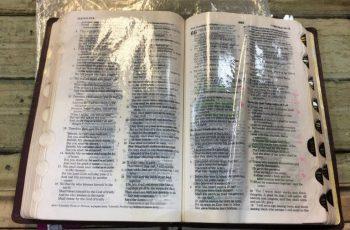 BÍBLIA VERTE ÓLEO NOS ESTADOS UNIDOS !!!